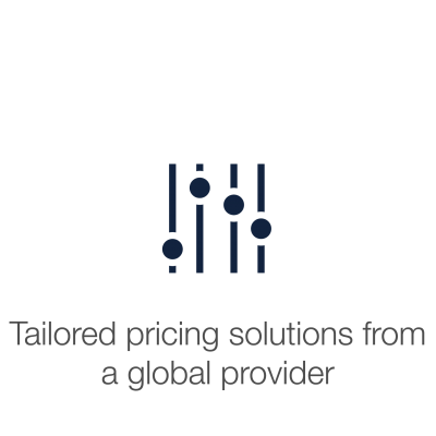 "Slider console with text displaying ""Tailored pricing solutions from a global provider""."